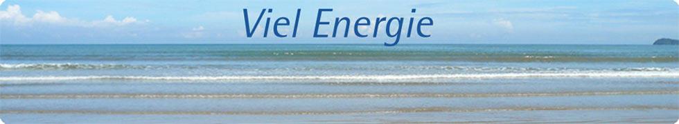 www.vielenergie.de-Logo